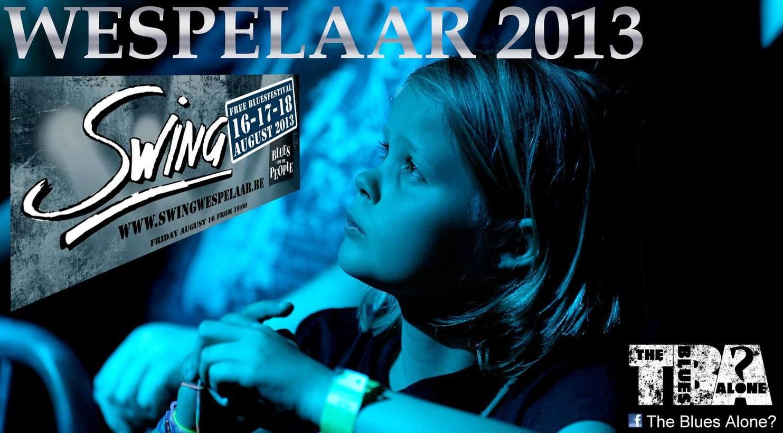 Swingwesp2013slider